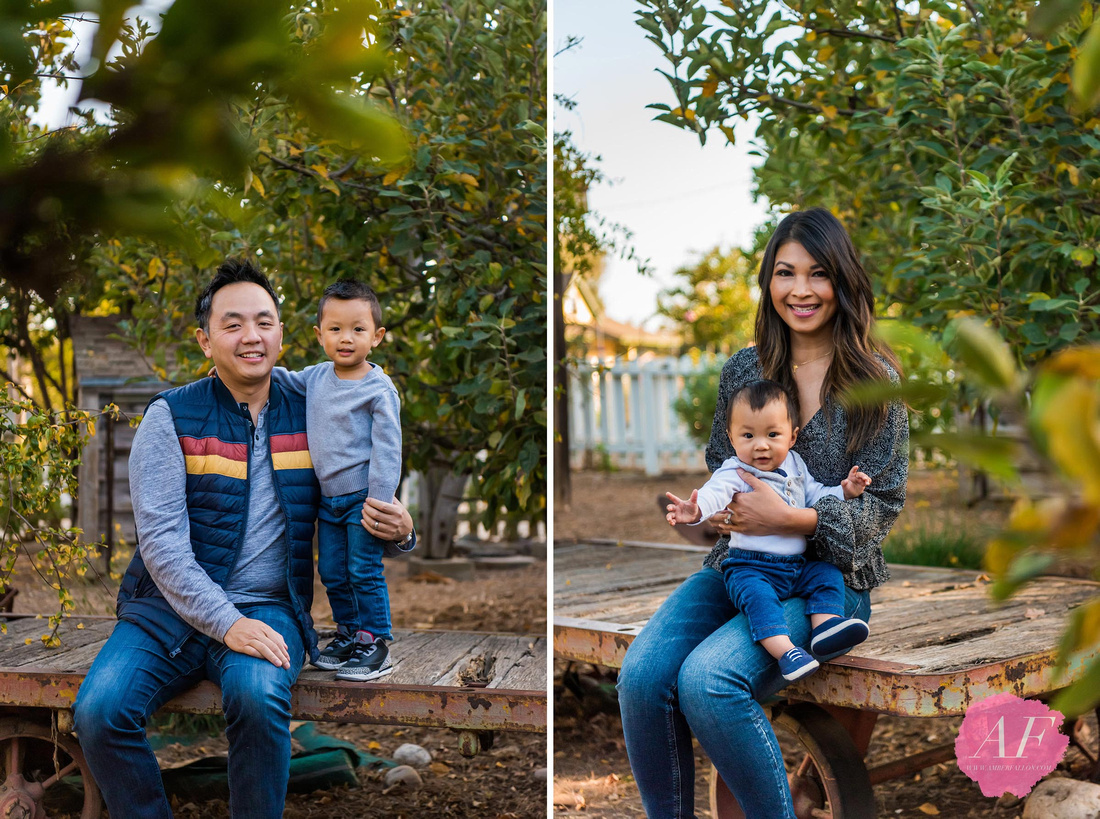 San Diego family photographer Amber Fallon Photo photographs young professional Chinese-American family photo session with two young toddlers at a rustic, nature park named Old Poway Park in San Diego, California